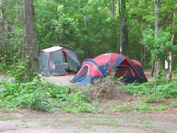 tents in the park's campground